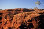 King's Canyon • NP Watarrka